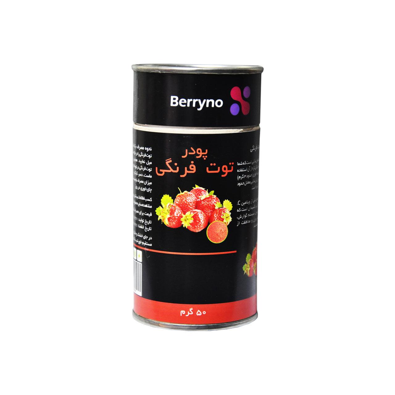پودر توت فرنگی – Berryno