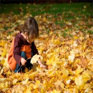 پیاده روی در پاییز