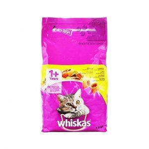 غذا بالشتی گربه